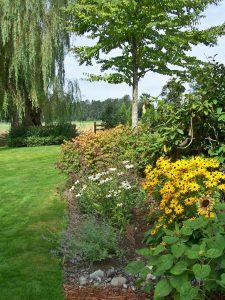 katsura garden